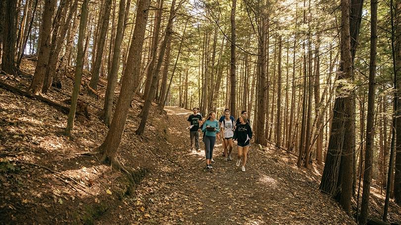 Pine Park trail last fall